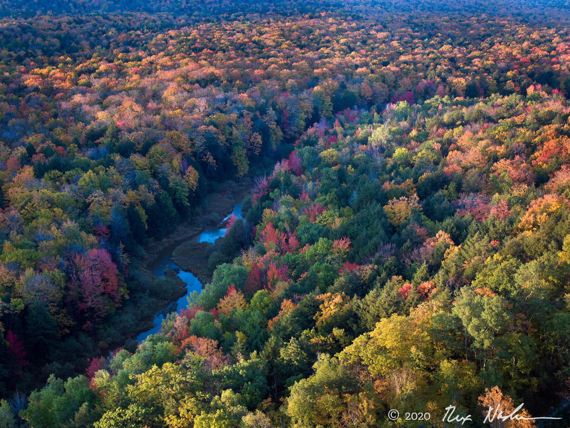 Porcupine Wilderness - Michigan Upper Peninsula