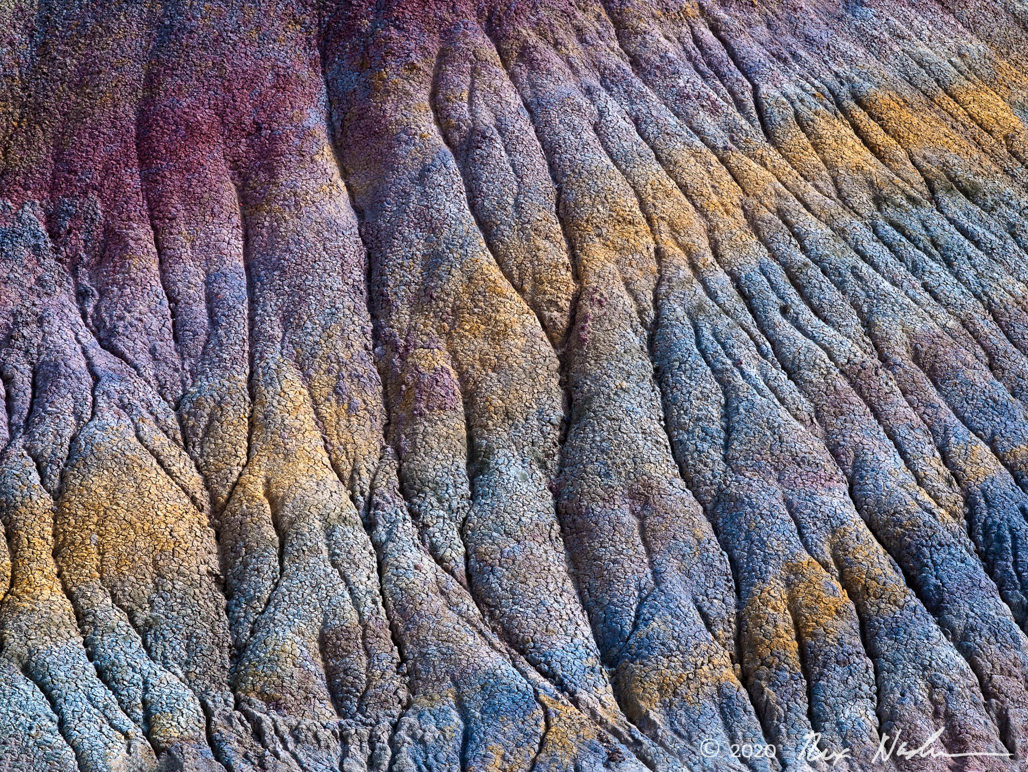 Spectrum - Paria Wilderness