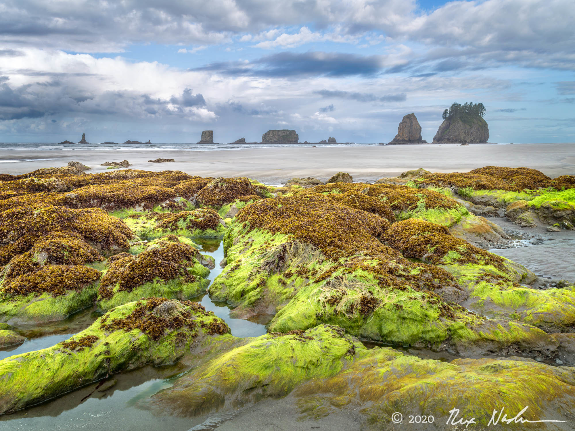 Emerald Isle - Olympic NP