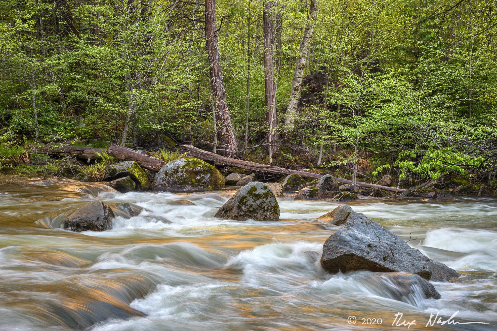 Idyll - Yosemite NP