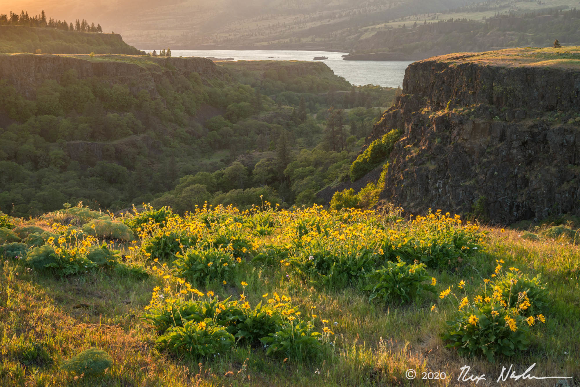 Bluff - Columbia River Gorge