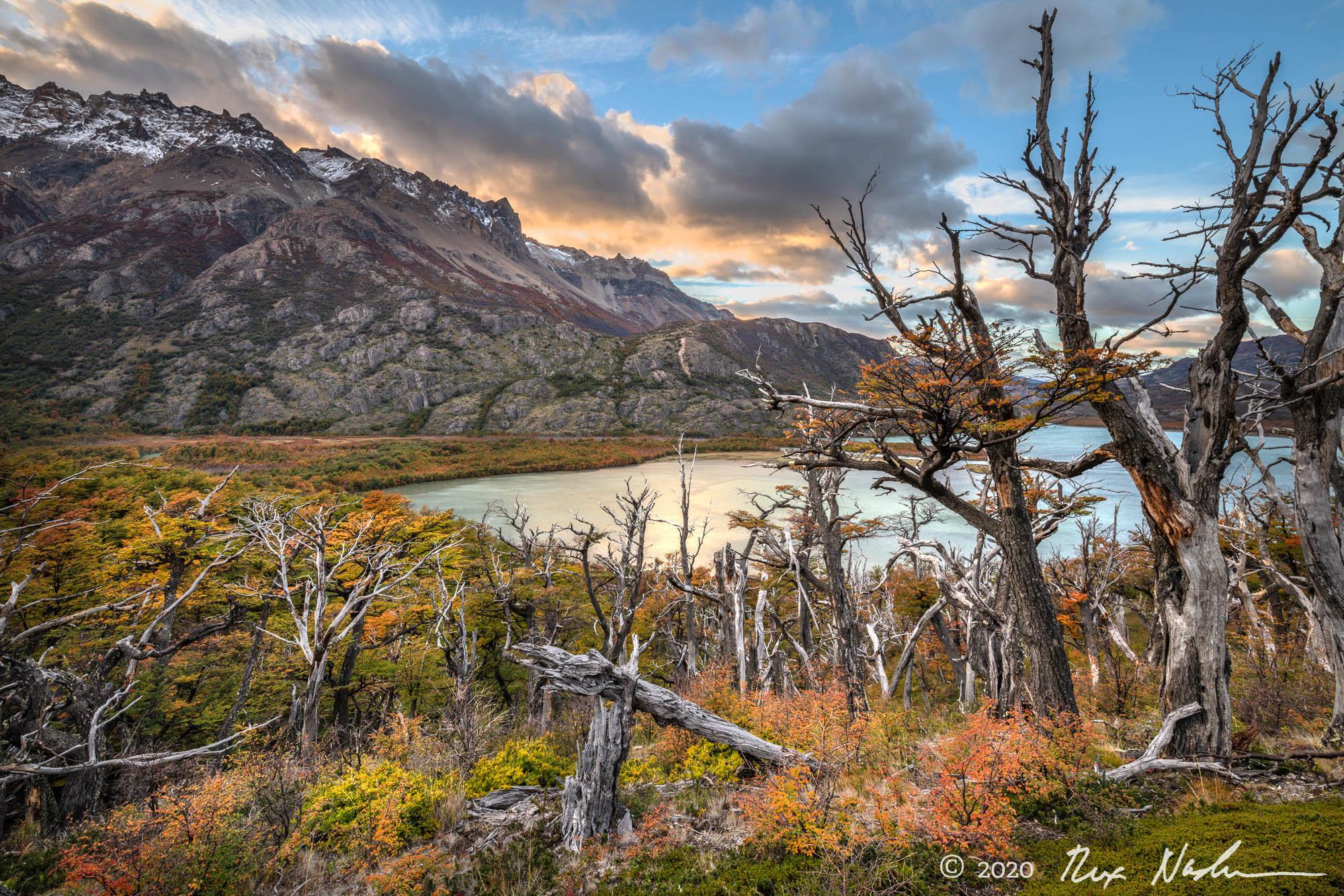 Lago Condor with Lenga Forest - Near El Chalten, Argentina