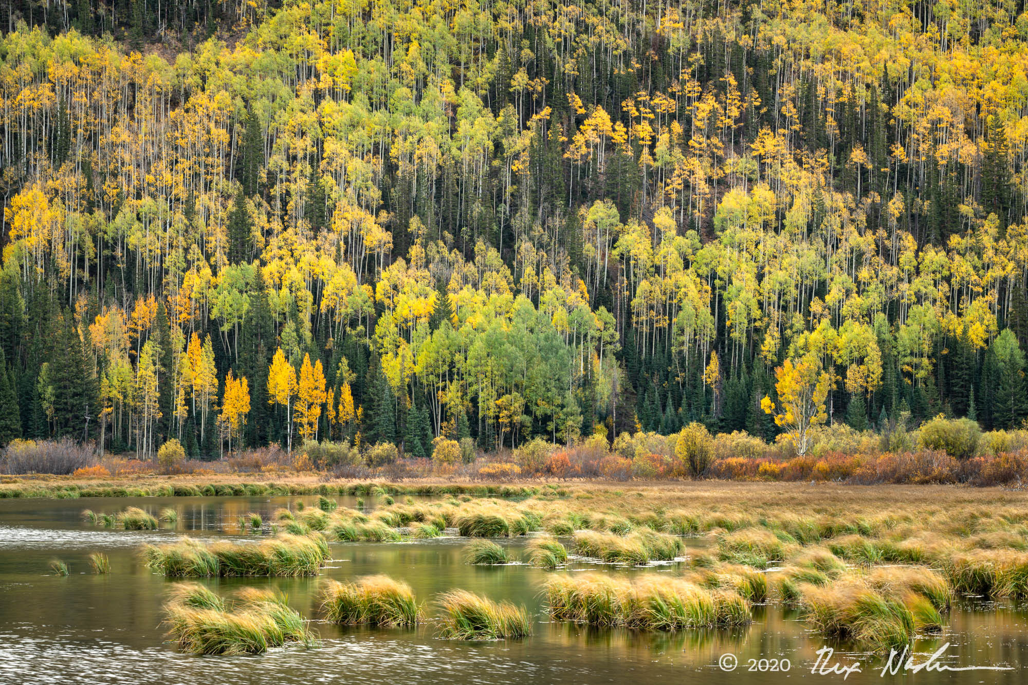 Plateau - San Juan Mountains, Colorado