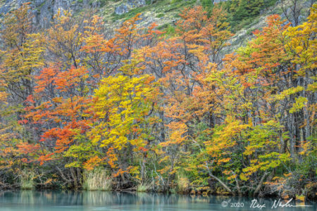 Austral Autumn